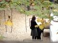 【貴重な盗*】韓国カップルが公園でどうどうとしているのを向かいの住人がゲット ※レア